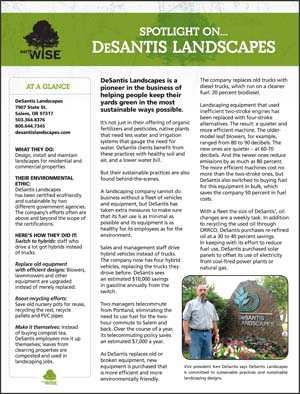 DeSantis Landscapes Case Study Sheet