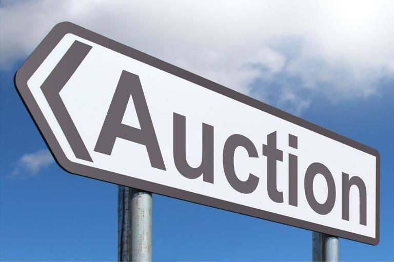 Auction: Sale of Tax Foreclosed Real Property